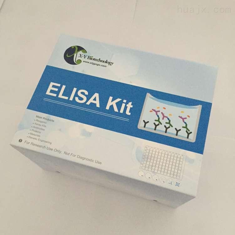 人血管生成素相关生长因子检测试剂盒
