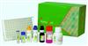 小鼠ACE2检测试剂盒