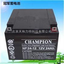 *蓄电池NP24-12 免维护铅酸蓄电池12V24AH