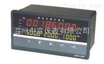 ZXDH9000流量积算仪