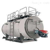 龙兴集团导热油锅炉