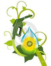 新原料带动生物燃料蓬勃发展