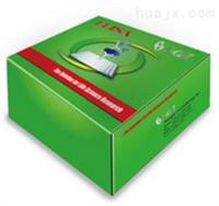 小鼠ACE检测试剂盒