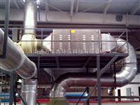 苏氨酸废气处理设备