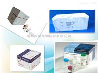 大鼠干细胞因子受体(SCFR)elisa试剂盒现货供应